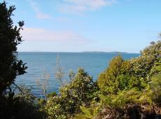 130 Horseshoe Point Road, Stewart Island